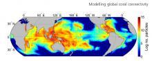 Cette carte de distribution des larves de corail à l'échelle mondiale a été réalisée à partir des trajectoires simulées de plus 115 millions de larves. L'échelle de couleur exprime le logarithme du nombre de larves individuelles passant dans une cellule de 1° de côté. Les zones bleues présentent une faible quantité, et les rouges une quantité importante.
