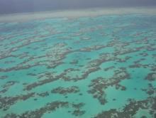 Grande barrière de corail (Australie)