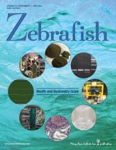 Zebrafish revue