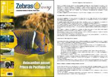 ZebrasO'mag n°06 - Etablir un diagnostic chez les poissons