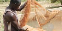 Aquaculture sénégalaise