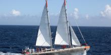 Tara Expéditions - Organisation à but non lucratif qui met en place des expéditions pour étudier et comprendre l'impact des changements climatiques et de la crise écologique sur nos océans depuis 2003.